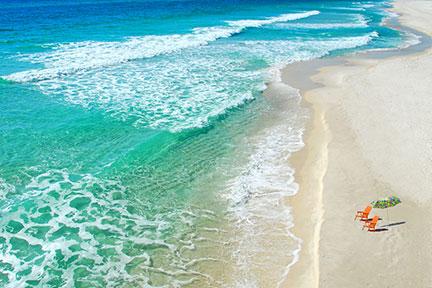 Senior travel and leisure update
